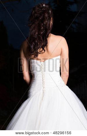 Rear View Of Bride In Elegant Wedding Dress