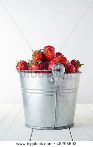 Strawberry Harvest Side View