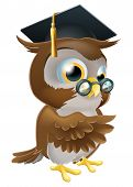 stock photo of convocation  - An illustration of a smart owl wearing a mortar board graduation cap and spectacles and pointing - JPG
