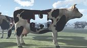 stock photo of unnatural  - Cow Puzzle could represent modern farming and  processing of beef and dairy products - JPG