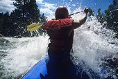 stock photo of paddling  - Rear view of a male kayaker paddling through rapids - JPG