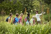 stock photo of  preteen girls  - Young teacher with children on nature field trip - JPG