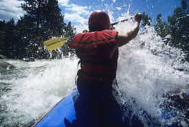 stock photo of kayak  - Rear view of a male kayaker paddling through rapids - JPG