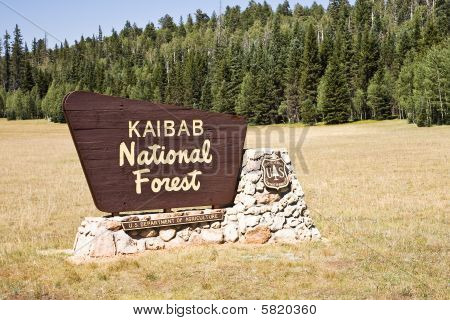 Kaibab National Forest Entrance Sign