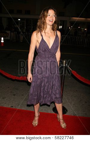 Jill Hennessy at the Los Angeles Premiere of