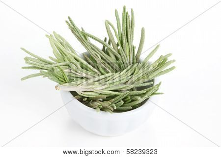 Rosemary (rosmarinus Officinalis) In A White Bowl On White Background.