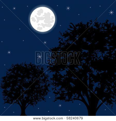Moon night and tree