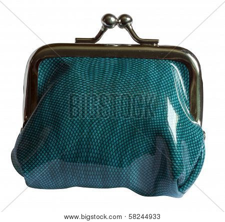 One Green Purse