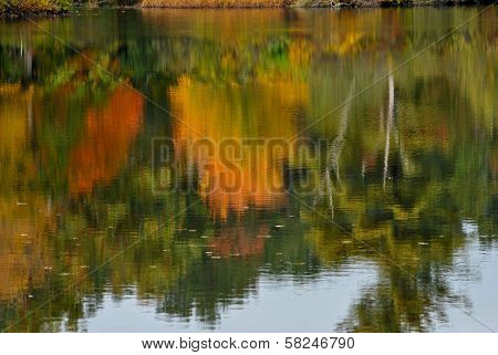Reflection in a Pond Showing the Fall Foliage