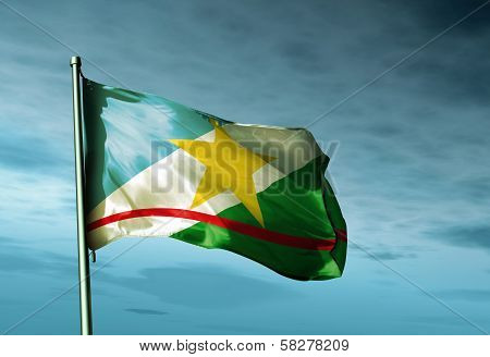 Roraima (Brazil) flag waving in the evening