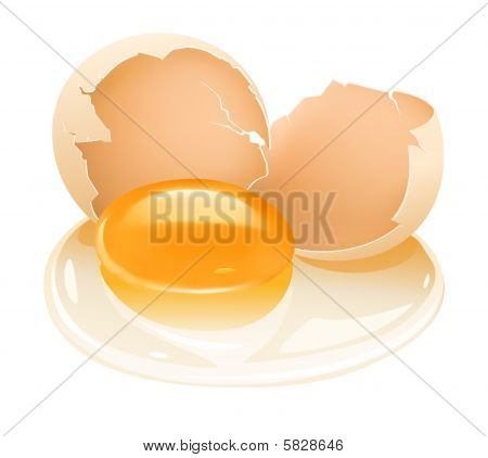 cracked hen's egg food with yolk and albumen