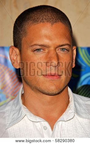 Wentworth Miller at