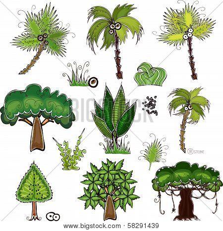 set of jungle trees