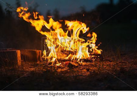High Flame Of A Bonfire. Fire In Night