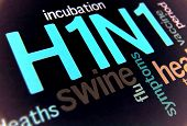 picture of swine flu  - Swine flu H1N1 disease with virus vaccine - JPG