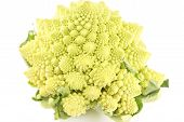 picture of romanesco  - Romanesco broccoli  - JPG