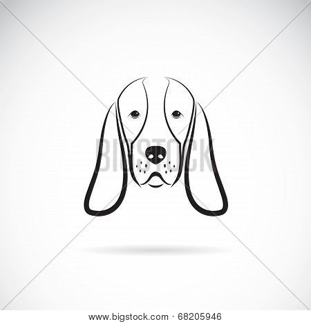 Vector Image Of A Basset Hound Head