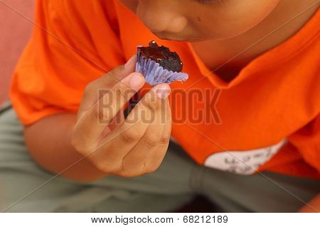 Kids Eating Delicious Snacks