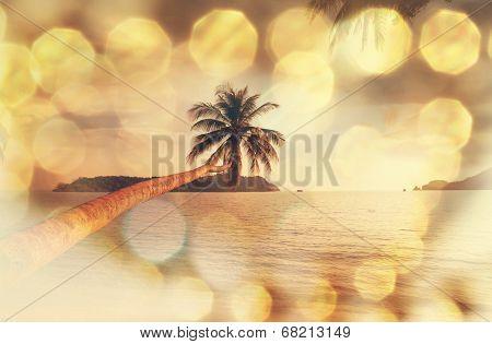 Tropical serenity beach