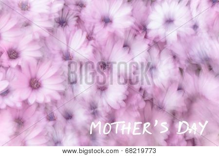 Mother's day greeting card, holiday greetings, gift for mommy, dreamy background of pink daisy flowers, flowery field in spring garden, slow motion photography effect, fine art postcard