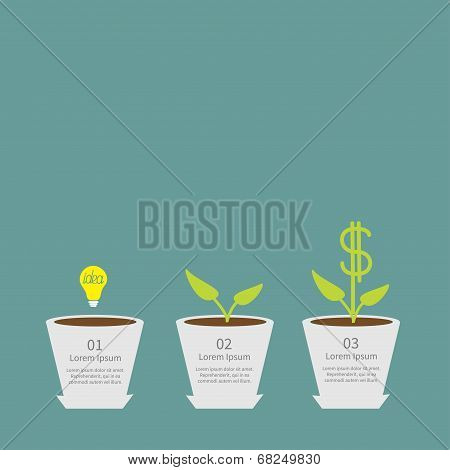 Idea bulb seed, watering can, dollar plant in pot. Financial gro