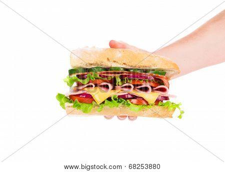 Hand holding fresh sandwich.