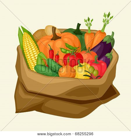 Illustration of stylized sack with fresh ripe vegetables.
