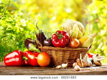 Vegetables. Fresh Bio Vegetable in a Basket. Over green blurred Nature Background. Organic vegetables. Harvest concept. Harvesting