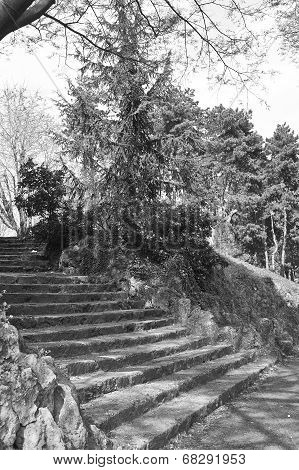 Park Of Valentino