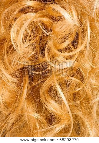 Blonde Curly Hair - Background