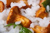 picture of chanterelle mushroom  - Background of rice with mushrooms chanterelles and parsley macro horizontal - JPG