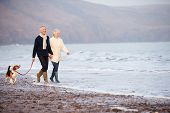 stock photo of petting  - Senior Couple Walking Along Winter Beach With Pet Dog - JPG