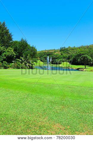 Fairway Landscape Grass