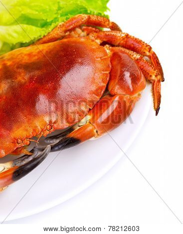 Red tasty boiled crab with fresh green lettuce salad isolated on white background, delicious seafood, luxury restaurant menu