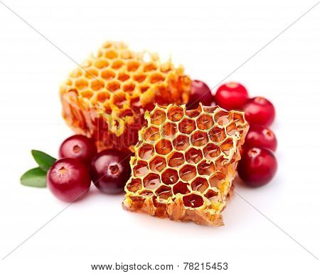 Honeycomb With Cranberries