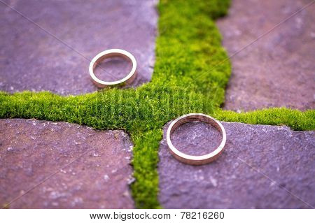 Wedding Rings On The Stone