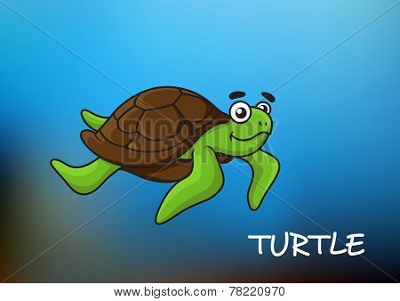 Sea turtle character illustration