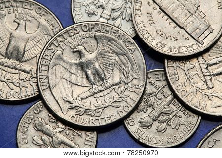 Coins of USA. Bald eagle (Haliaeetus leucocephalus) depicted on the US quarter coin.