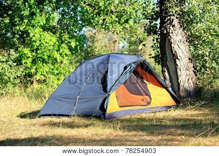 tourist tent in forest's camp