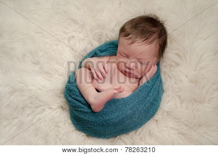 Portrait Of A Curled Up, Sleeping Newborn Baby Boy