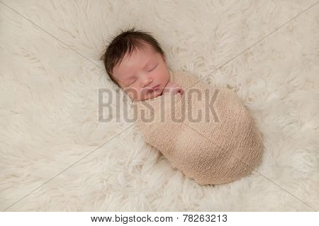 Portrait Of A Bundled Up Newborn Baby Boy