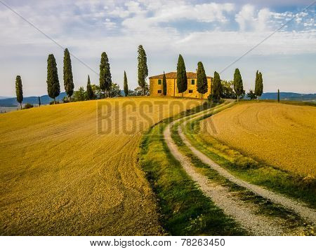 Farm in tuscan landscape, Italy