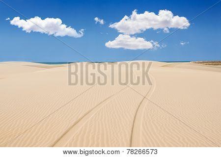 Wheel Print In Sand Dunes Of Santa Monica Beach - Praia De Santa Monica In Boavista - Cape Verde - C