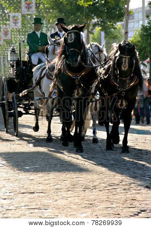 Carriage On The Streets Of Seville
