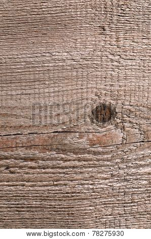 The Wood Texture