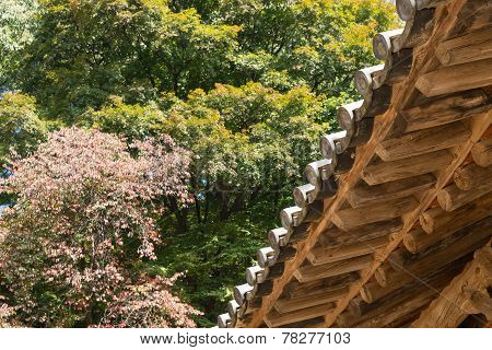 Underside Of Korean Traditional Eaves