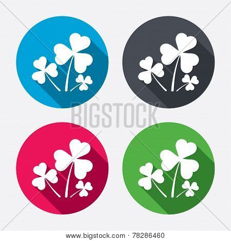 Clovers with three leaves sign. St. Patrick