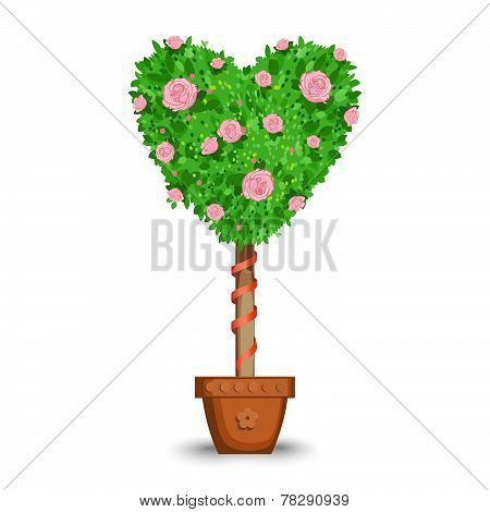 Love Tree In A Pot
