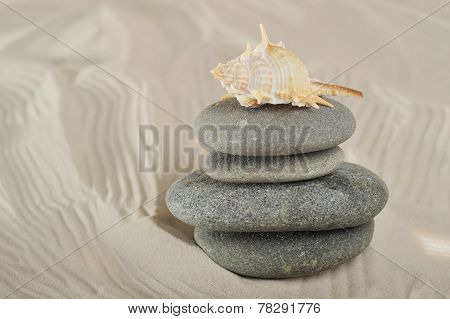 Cockleshell And Stones