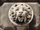 ������, ������: Lions Head
